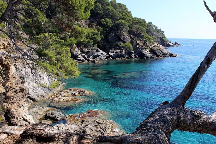 Visite des Calanques, beautés du Sud de la France