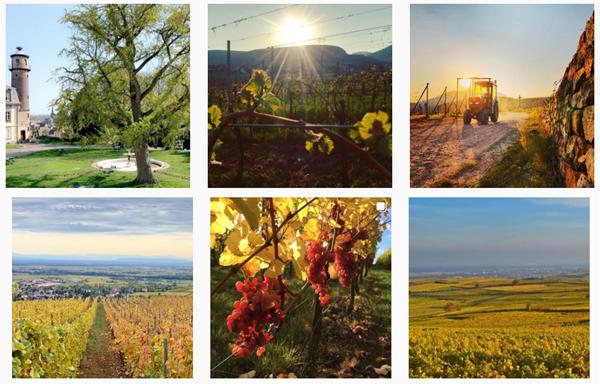 route des vins en Alsace