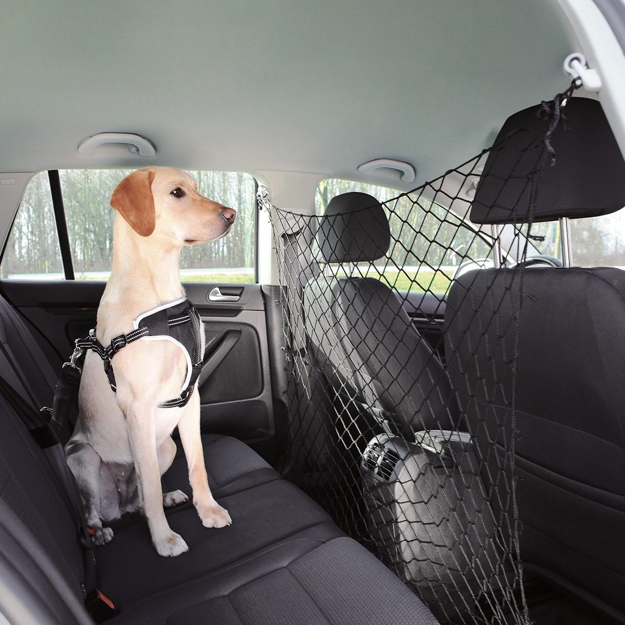 filet de sécurité pour chien